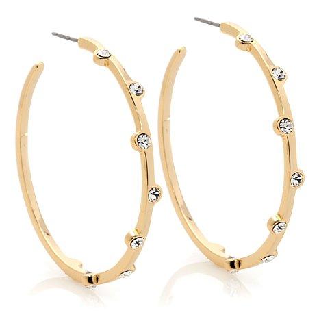 akkad-castillo-clear-crystal-goldtone-hoop-earrings-d-20130311180539667~231545