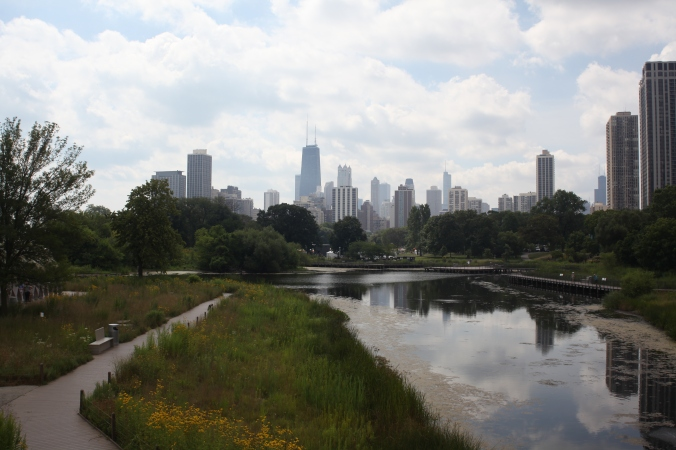 Chicago Skyline at Lincoln Park Zoo for Zoo Yoga | Stile.Foto.Cibo